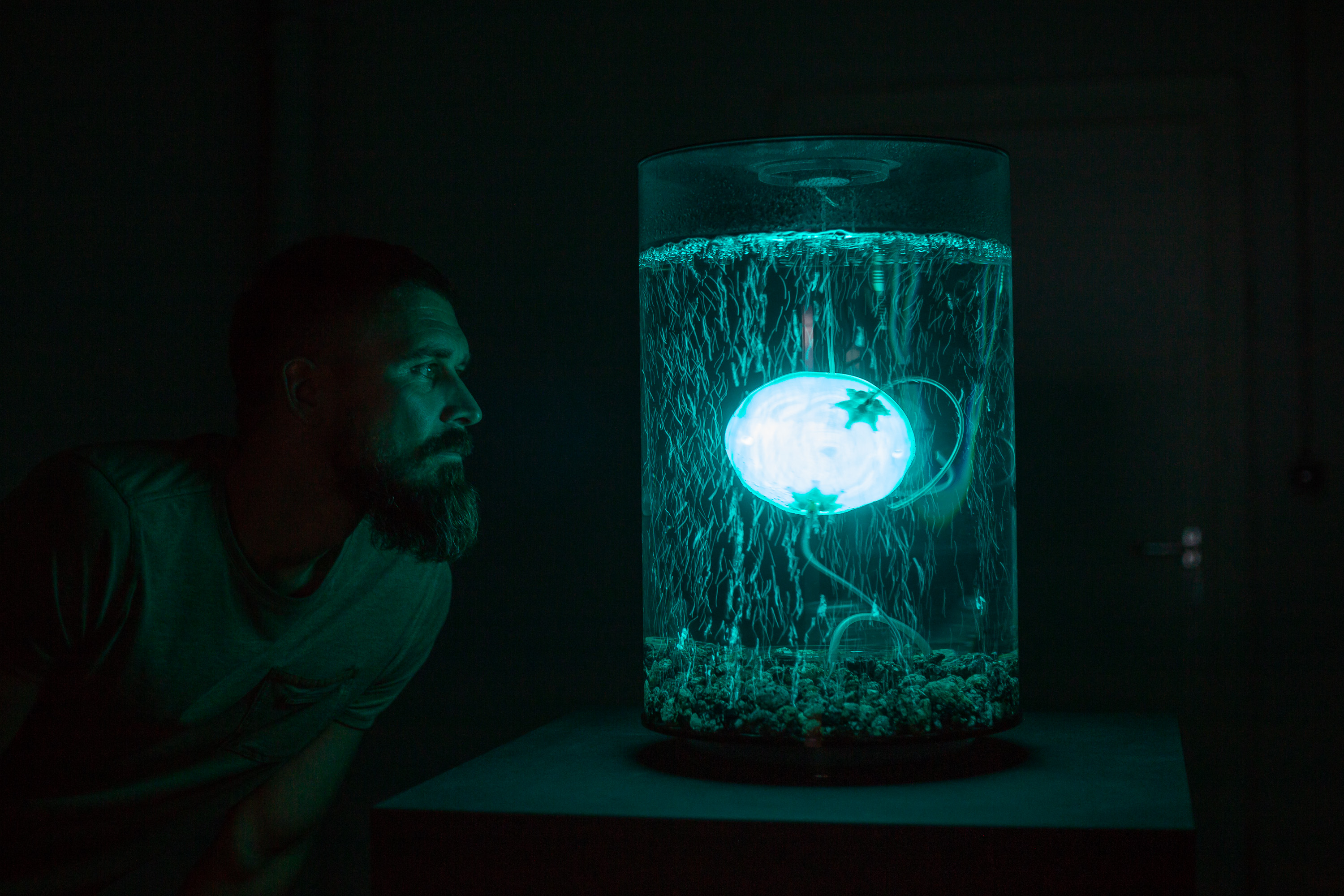 ArchaeaBot by Anna Dumitriu and Alex May Photo credit Vanessa Graf - Ars Electronica 2018.